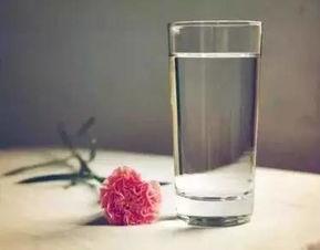 浩泽净水为你解答如何让每一位家庭成员正确喝水?